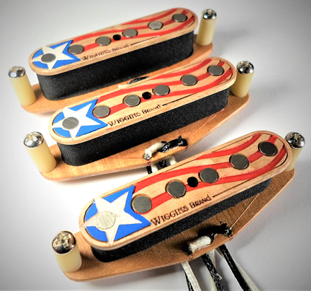 Wiggins Brand America Painted Pickup Strat Set